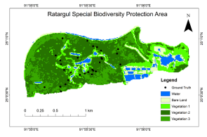 Forest degradation assessment of Ratargul Special Biodiversity Protection Area for conservation implications